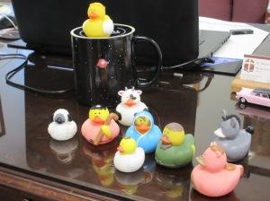Duckie Jesus has arrived!